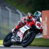American Hopkins steals the show in free practice at Oulton Park